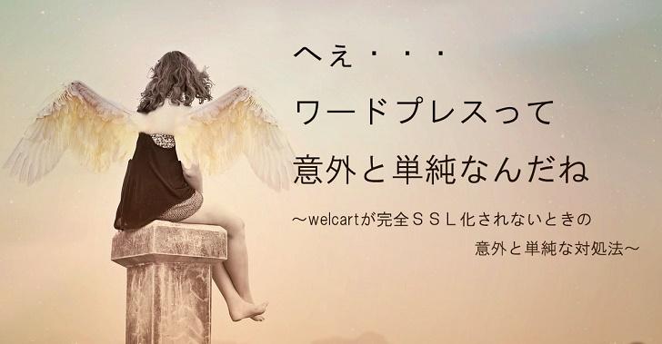 WelcartのSSL化ができないぃぃ!ときの、意外過ぎた対処法【奮闘記】